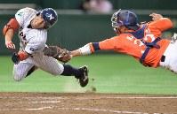 【さいたま市(日本通運)-日立市(日立製作所)】四回表さいたま市2死、手銭が左中間三塁打を放ち、そのまま本塁を狙うが、タッチアウト。捕手・唐谷=東京ドームで2016年7月22日、北山夏帆撮影