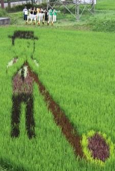 田んぼアートを前に演奏する那須アルプホルンクラブのメンバーら=那須塩原市関谷で