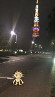 東京タワー周辺に現れるポケモン