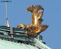 愛・地球博で展示が決まった名古屋城のシャチホコ=2004(平成16)年7月