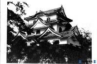 数少ない建造当時の天守閣を残す彦根城=1962年8月撮影