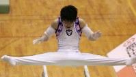 全日本選手権の男子団体で優勝した日体大の内村航平の平行棒=新潟県上越市のリージョンプラザ上越で2008年11月2日、須賀川理撮影