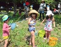 釣れたアメリカザリガニを観察する子供たち=静岡市清水区両河内地区の清水森林公園「やすらぎの森」で