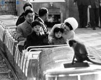 上野動物園を家族そろって訪れ、新幹線型お猿電車に浩宮さまと礼宮さまを抱いて座る皇太子さまと美智子さま=1968年(昭和43年)1月撮影