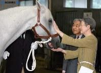 伊勢神宮に神馬として贈られる「晴勇」が両陛下とお別れ=皇居で2004年(平成16年)10月12日、代表撮影