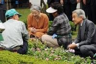 シルバー人材センター会員のガーデニング作業を視察する両陛下=東京都三鷹市の三鷹市山本有三記念館で2008年(平成20年)9月19日、平田明浩撮影