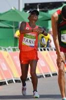 男子50キロ競歩でフィニッシュする谷井孝行=リオデジャネイロのポンタル周回コースで2016年8月19日、三浦博之撮影