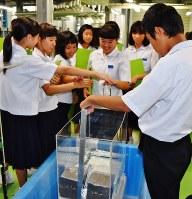 波力発電の実験装置を動かす生徒たち