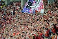 【巨人―広島】三回表の得点に盛り上がる広島ファン=東京ドームで2016年9月10日、大西岳彦撮影