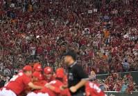 【巨人―広島】25年ぶりのセ・リーグ優勝が決まって喜ぶ広島ファンたち=東京ドームで2016年9月10日、宮間俊樹撮影