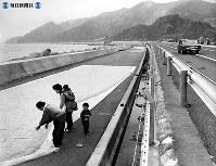 東名高速道路開通:静岡・由比海岸の埋立地に出来た東名高速道路は高波の被害を避けるため、海側に水たたきをつくった。水たたきは漁民に格好の物干し場。ピンク色のサクラエビが美しい色どりを添えていた=1968年(昭和43年)4月撮影