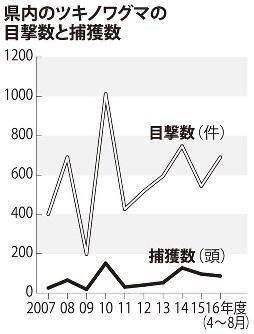 島根県内のツキノワグマの目撃数と捕獲数