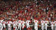 連日多くの広島ファンで埋まるマツダスタジアム。優勝決定の可能性があった9月8日の中日戦には球場史上最多の3万2546人が詰めかけた=小関勉撮影