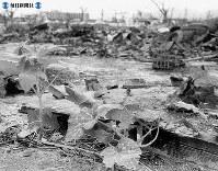 【広島】爆心地から約400メートルのところに芽吹いたカボチャ(手前中央)とトウゴマ(左隣)の新芽=1945(昭和20)年9月11日ごろ