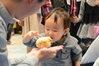 初めて見るヒヨコに興味津々の子ども=福島市栄町のエスパル福島店で