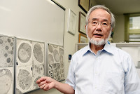 Tokyo Institute of Technology honorary professor Yoshinori Ohsumi explains a phenomenon called autophagy with photo panels on Sept. 3, 2015, in Yokohama's Midori Ward. (Mainichi)