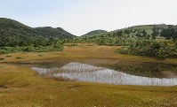 黄金色に色づいた八甲田山の田茂萢湿原=2016年9月30日、足立旬子撮影