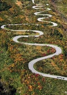 赤や黄色に色付き、見ごろを迎えた弥陀ケ原付近の紅葉=富山県立山町で2016年9月30日、本社ヘリから加古信志撮影