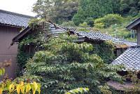 倒壊の恐れがあり、行政代執行で解体される空き家=福井県越前町提供