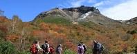 見ごろとなった茶臼岳を望む紅葉=栃木県那須町の茶臼岳西側の姥ケ平で2016年10月7日