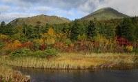 急激な冷え込みで色づく睡蓮沼と八甲田の山々=青森市と十和田市を結ぶ国道103号「八甲田・十和田ゴールドライン」で2016年10月7日、足立旬子撮影