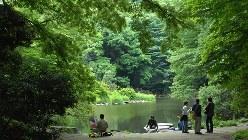 東大本郷キャンパス内の三四郎池