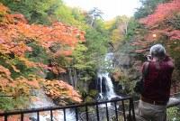紅葉が見ごろを迎えた竜頭ノ滝。滝つぼ付近では早朝から観光客が詰めかけた=栃木県日光市中宮祠で2016年10月13日、花野井誠撮影