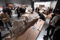 Recreations of structures of the Lascaux cave are seen at the National Museum of Nature and Science in Ueno, Tokyo on Oct. 31, 2016. (Mainichi)