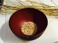 収穫した米粒、お茶わん1杯にも満たないが……=2016年10月30日、上東麻子撮影