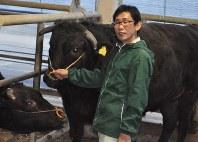 学校で飼育する牛の綱をひく青木祐太さん=いずれも養老町で