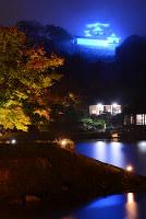 青くライトアップされた彦根城天守。手前は名勝・玄宮楽々園=2015年撮影、滋賀県彦根市提供