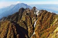 色づいた根子岳の山腹。中央の天狗岩付近には熊本地震で崩落した跡が白く残っていた。画面左奥の白煙が上がっている所は阿蘇・中岳=熊本県高森町で2016年11月4日、本社ヘリから須賀川理撮影