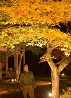 色づき始めた雲岩公園のモミジ=京都府与謝野町岩屋で2016年11月10日、安部拓輝撮影