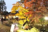 ライトアップされた紅葉=盛岡市清水町の南昌荘で2016年11月10日、藤井朋子撮影