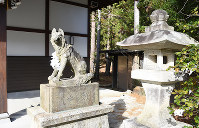 A wolf statue guards the entrance to Yamatsumi Shrine in the village of Iitate, Fukushima Prefecture, in this photo taken on Nov. 16, 2016. (Mainichi)