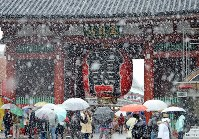 Tourists are seen in the snow by Kaminarimon gate in Tokyo's Asakusa district on the morning of Nov. 24, 2016. (Mainichi)