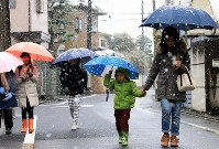 Children and parents walk through the snow to school in Tokyo's Suginami Ward on the morning of Nov. 24, 2016. (Mainichi)
