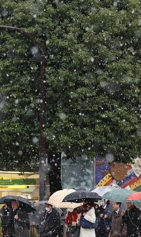 雪が降る中、傘を差して街を歩く人たち=東京都渋谷区で2016年11月24日午前7時53分、佐々木順一撮影
