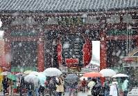 初雪が降るなか、雷門前に集まる観光客たち=東京・浅草で2016年11月24日午前10時18分、中村藍撮影