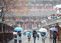 初雪が降る仲見世通り=東京・浅草で2016年11月24日午前8時59分、中村藍撮影
