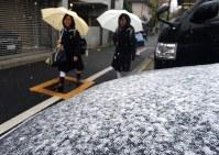 乗用車のボンネットに積もった雪=東京都文京区で2016年11月24日午前8時7分、武市公孝撮影