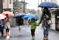 通学通園時間帯に雪が降る中、先を急ぐ親子連れと子どもたち=東京都杉並区で2016年11月24日午前8時すぎ、梅村直承撮影