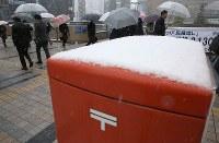 郵便ポストに降り積もった雪=東京都八王子市で2016年11月24日午前8時8分、宮武祐希撮影