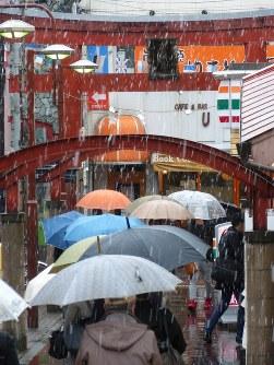 降りしきる雪の中をかさをさして歩く人たち=東京都大田区で2016年11月24日午前10時43分、米田堅持撮影