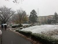 薄っすらと雪化粧した公園=横浜市青葉区で2016年11月24日、小島昇撮影