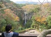 紅葉を背景に流れ落ちる福貴野の滝