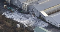 鳥インフルエンザが検出された養鶏場で作業をする作業員ら=新潟県関川村で2016年11月29日午前9時28分、本社機「希望」から