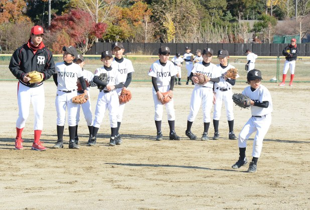 秋田 県 少年 野球