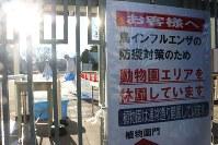 正門前に設置された、動物園エリアの休園を知らせる看板。門の奥では、職員が消毒液をまいていた=名古屋市千種区の東山動植物園で2016年12月11日午前8時31分、野村阿悠子撮影