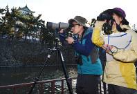 名古屋城の堀で野鳥を調べる調査チーム=名古屋市北区で14日午後3時13分、木葉健二撮影